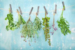 L'acné et la phytothérapie